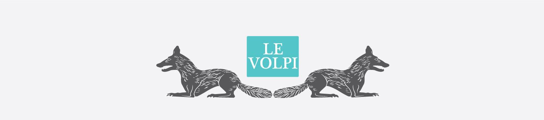 01_siti_internet_studio_grafica_padova_le_volpi