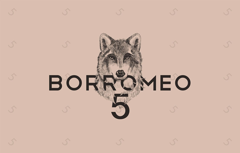 01-creazione-logo-Borromeo