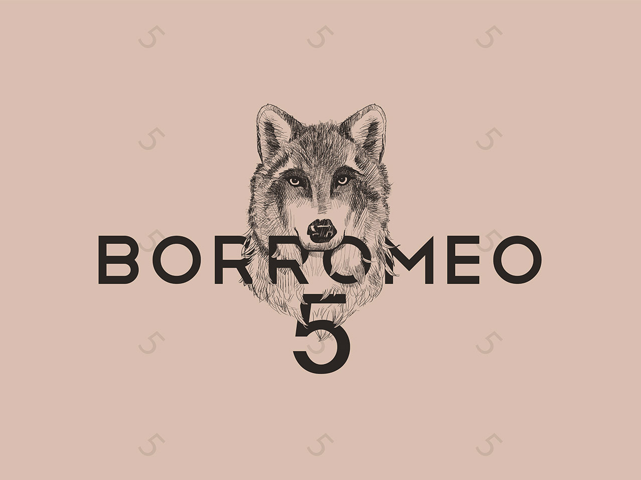 Creazione Logo Borromeo5